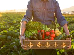 Conférence virtuelle: «Quelle autonomie alimentaire pour le Québec?»