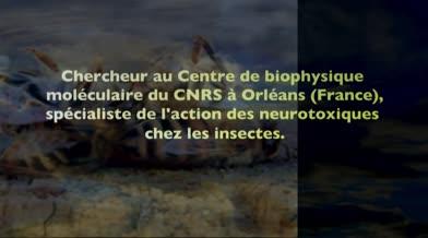 Conférence: «Allons-nous survivre aux abeilles?» au Coeur des sciences